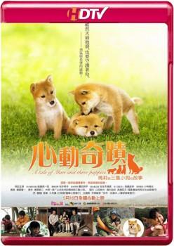 A Tale of Mari and Three Puppies 2007 m720p HDTV x264-BiRD